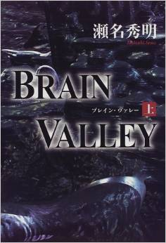 brainValley